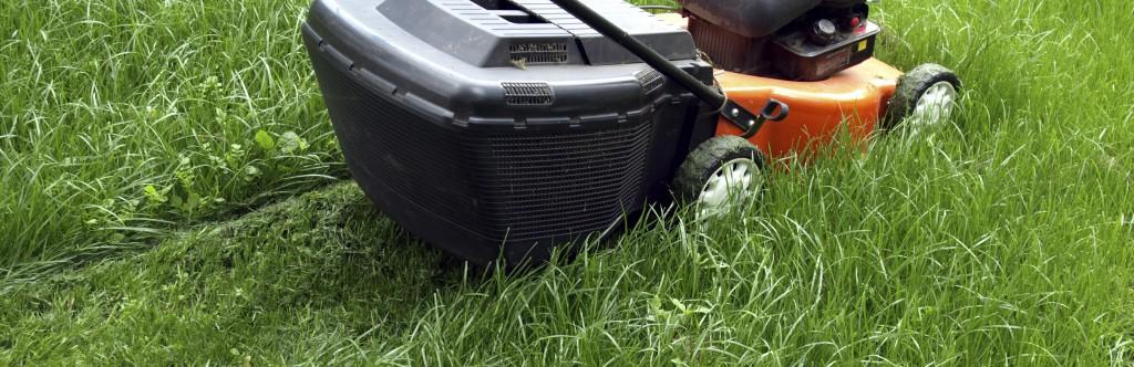Gräsklippning-Altervalls-Alltjänst